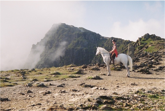 The horse at Bwlch Glas near the summit of Snowdon
