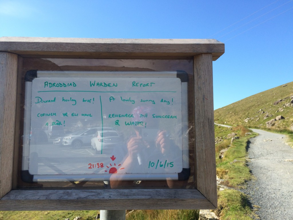 Our daily report at the bottom of the PyG track